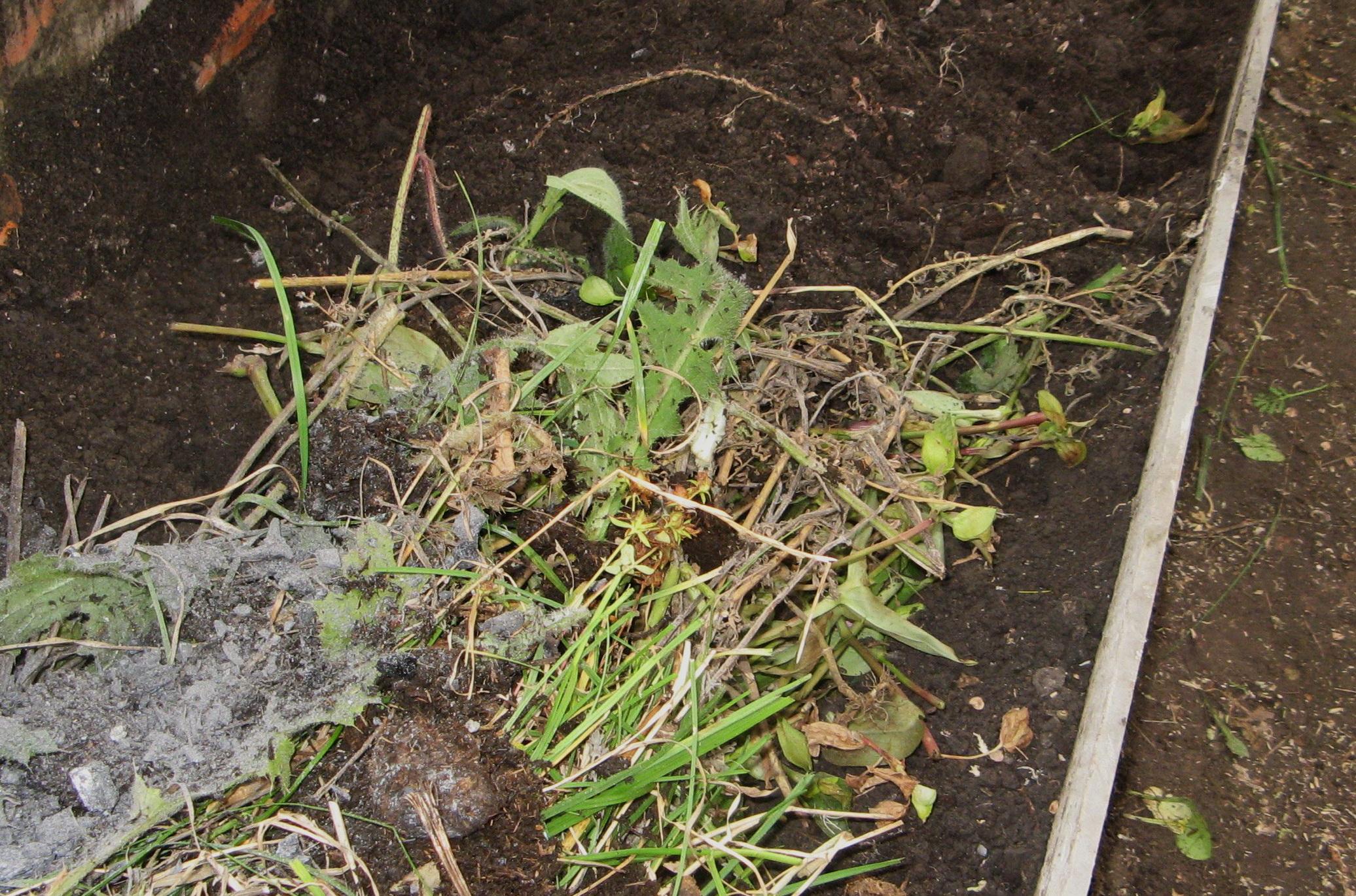 Уборка растительности