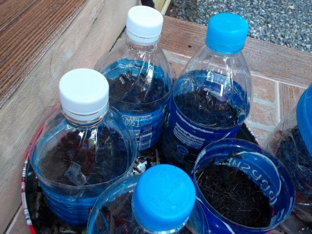 Горшочки из бутылок