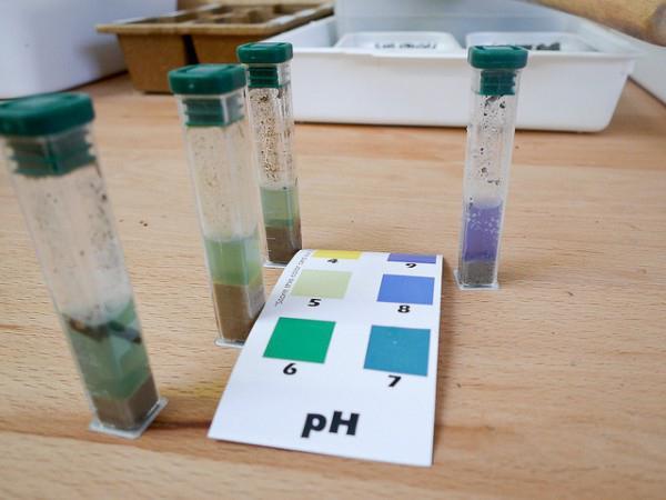 Магазинный набор для проверки кислотности почвы