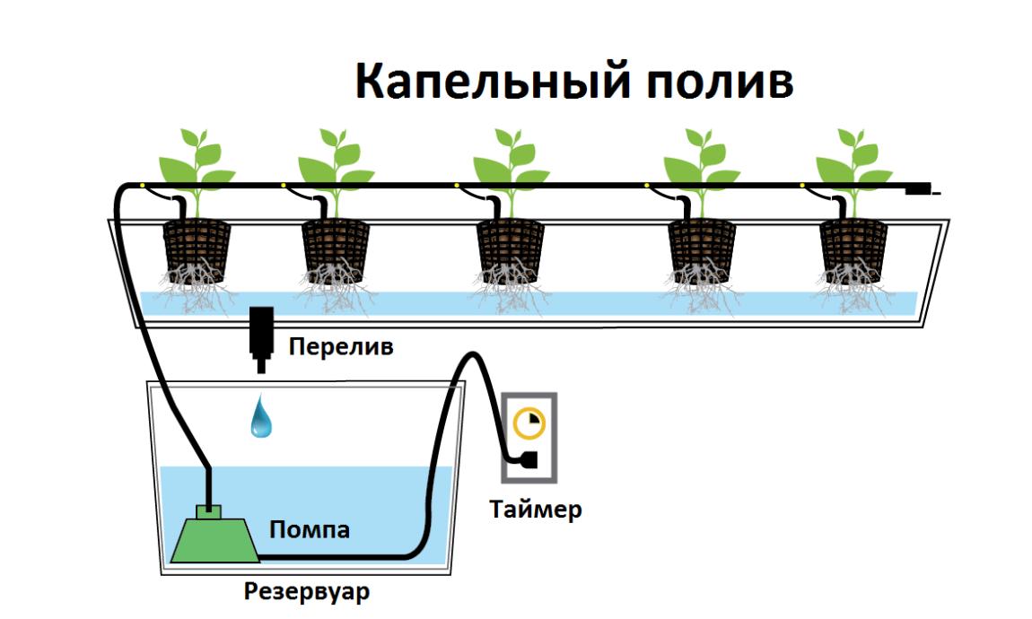 Примерная схема системы капельного полива