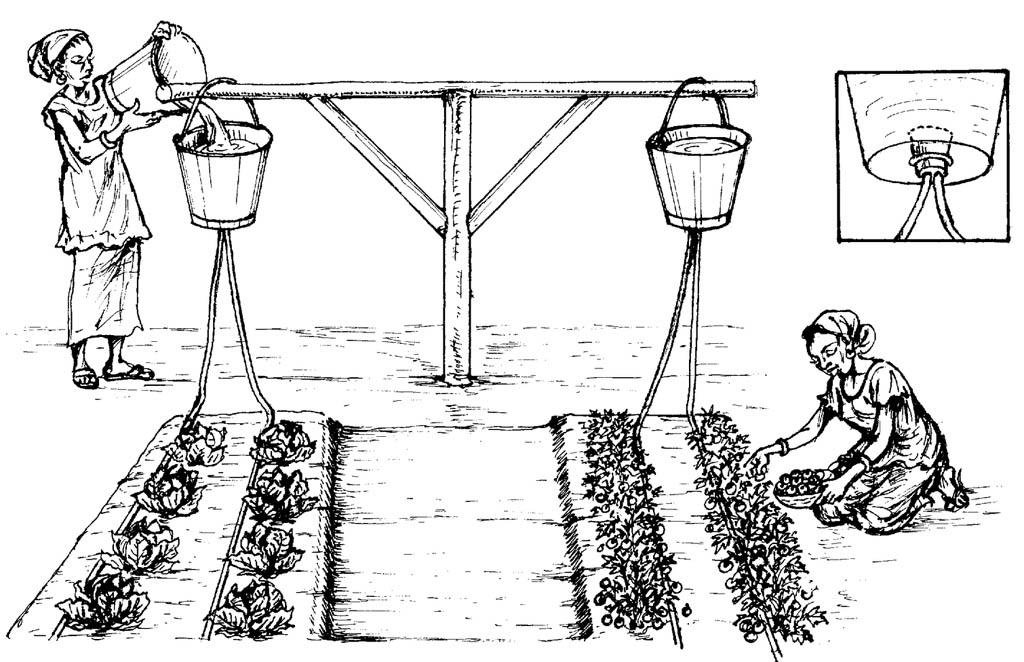 Простой капельный полив из ведер и садовых шлангов