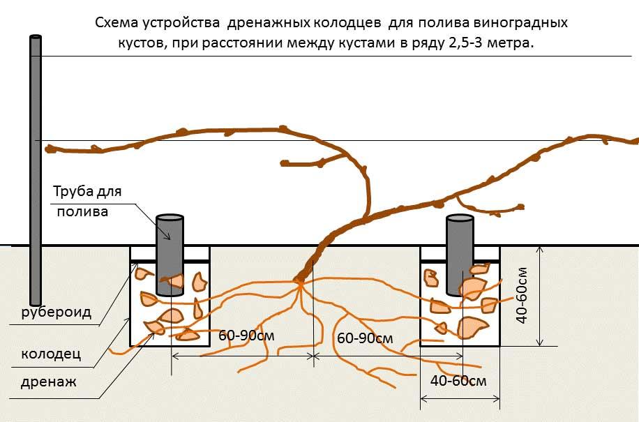 Расположение труб для полива и дренажного слоя