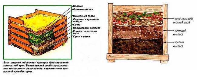Схема организации компостной кучи