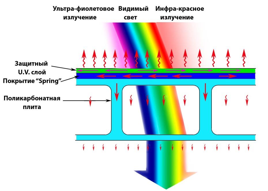 Схема строения поликарбонатного листа
