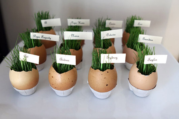 Таким способом можно вырастить рассаду практически любой культуры