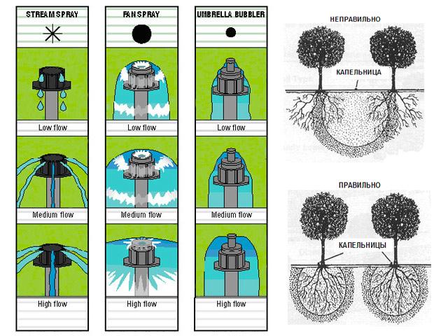 Виды капельниц для капельного полива