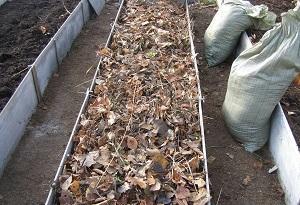 Засыпка листвы и сухой травы