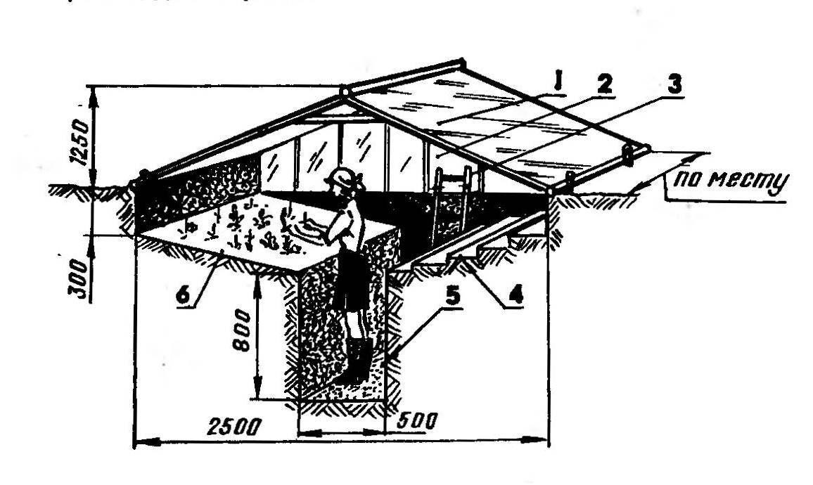 Заглубленный парник: 1 — стеклянная или пленочная крыша (на каркасе), 2 — входная дверь, 3 — лестница, 4 — террасная сторона возделываемого грунта, 5 — траншея-проход, 6 — наклонная сторона возделываемого грунта
