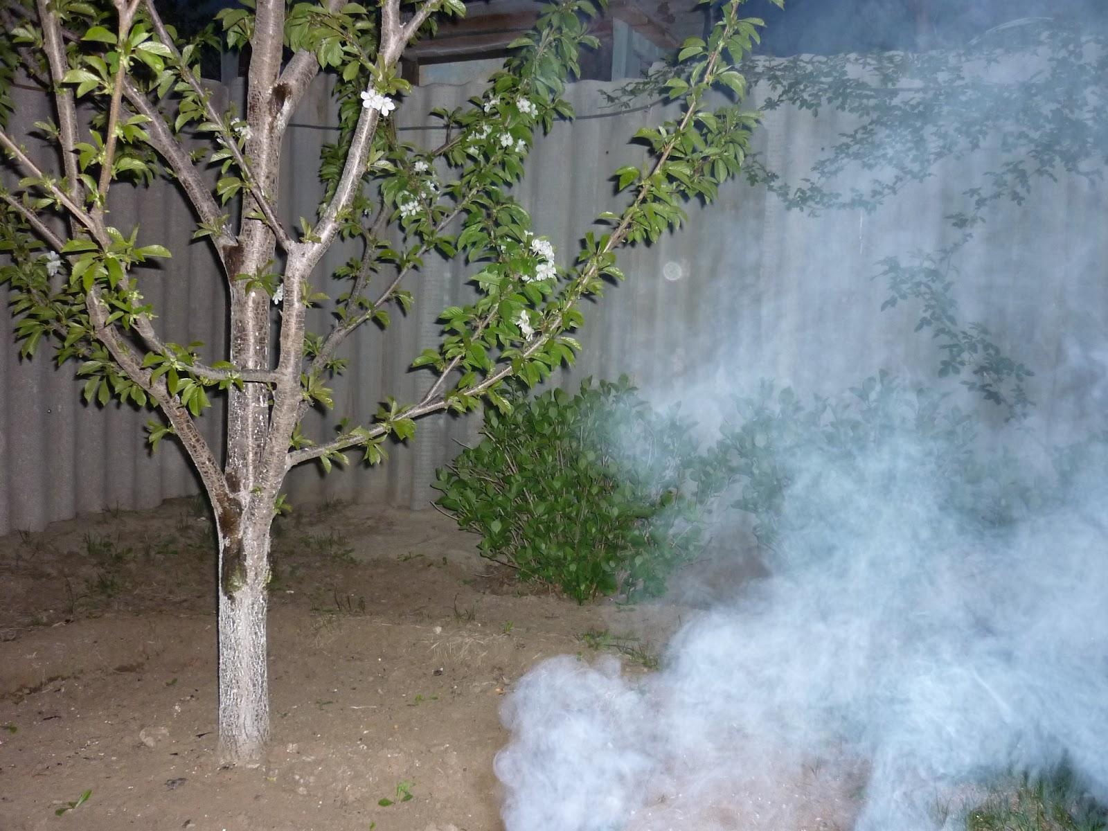 Дым должен окутать все растения