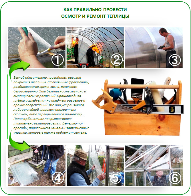 Как правильно провести ремонт и осмотр теплицы
