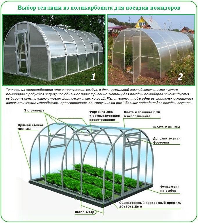 Как в теплицу посадить помидоры