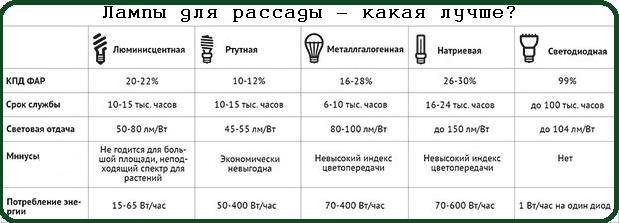Лампы для рассады - какая лучше