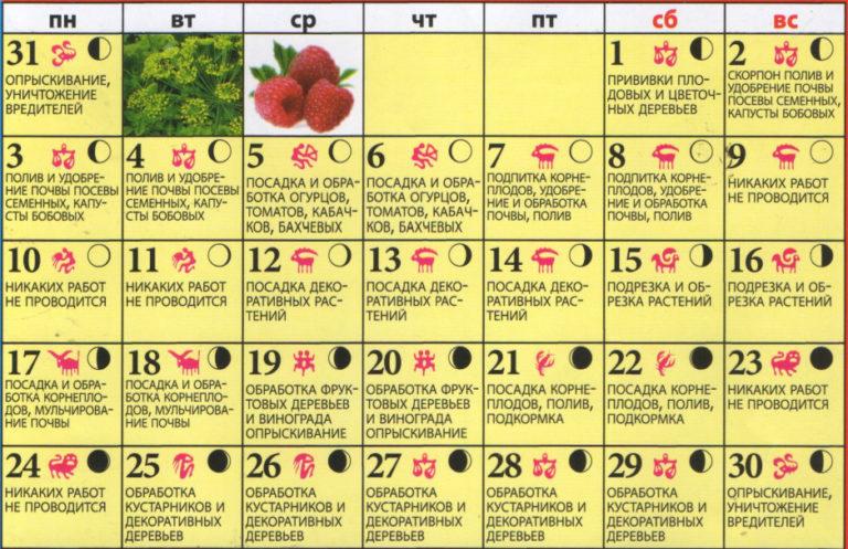 Знаки зодиака и посадочный лунный календарь