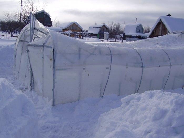 Недостаточное усиление каркаса и нерегулярная очистка крыши теплицы от снега может привести к такому печальному результату