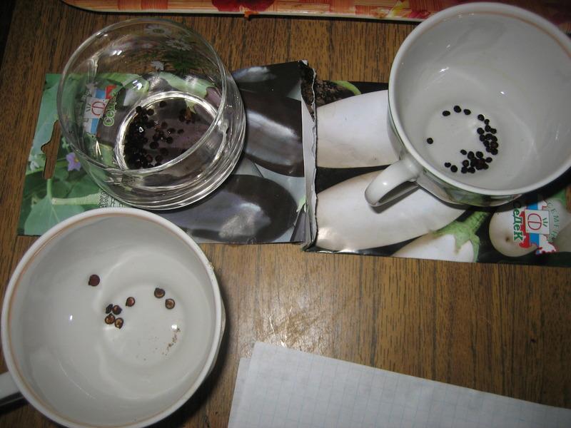 Обработка семян перекисью водорода