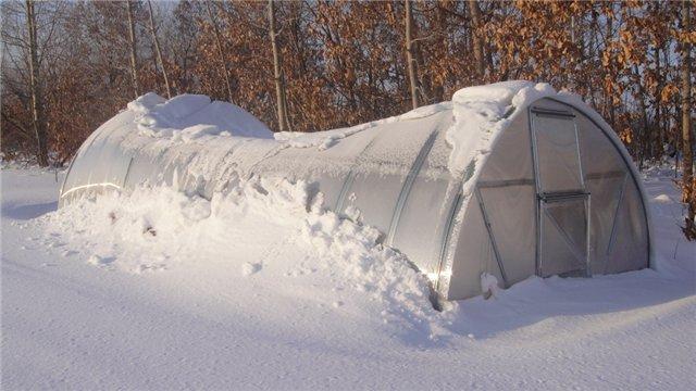Обычная теплица может не справиться со снеговой нагрузкой