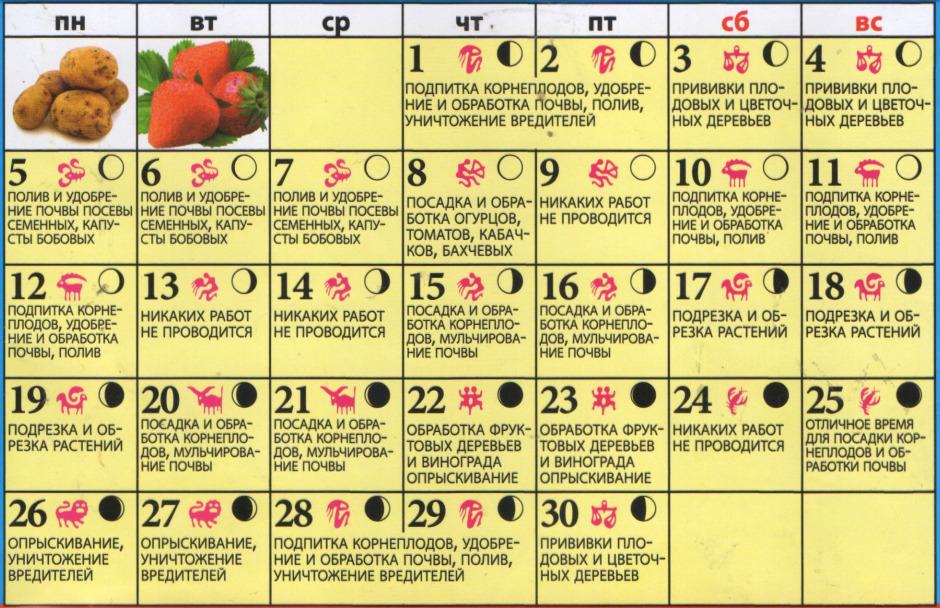 Календарь посадочных дней на июнь