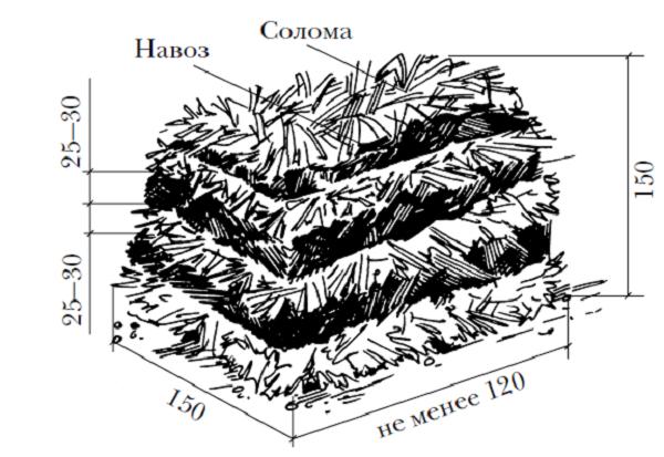 Схема бурта для получения компоста