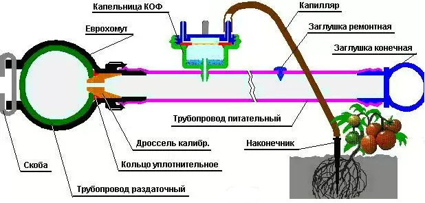 Схема устройства капельного полива из капельниц