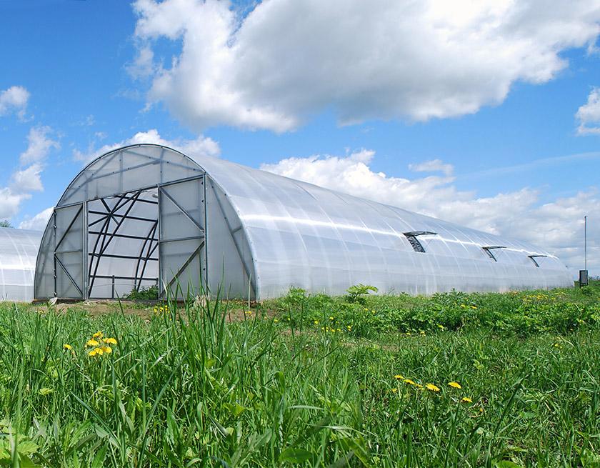Собранная промышленная теплица «Фермер-7.5»