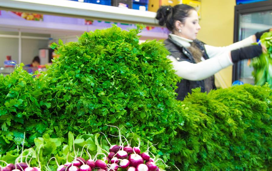 Зеленый лук круглый год. конвейер зеленого лука в теплицах 48