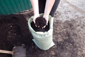 Земля для огорода, чернозем или торф