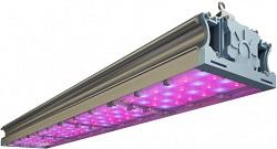 LED-ФИТО-168/RS