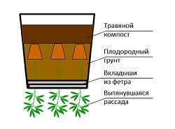 Заполнение ведер почвосмесью
