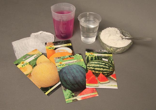 Что потребуется для посева семян арбуза на рассаду
