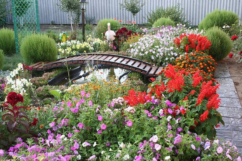 Цветущий рай в любимом саду