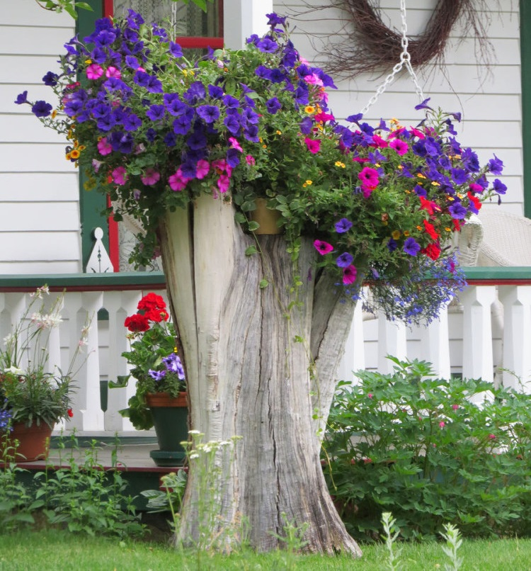 Если от срубленного дерева остался пень, который вы не решились выкорчевать, на нём можно устроить отличную клумбу