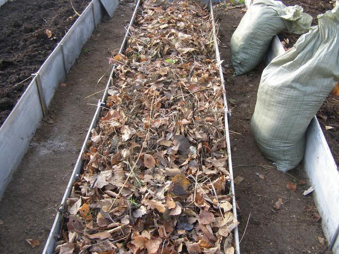 Грядка, наполненная сухими листьями