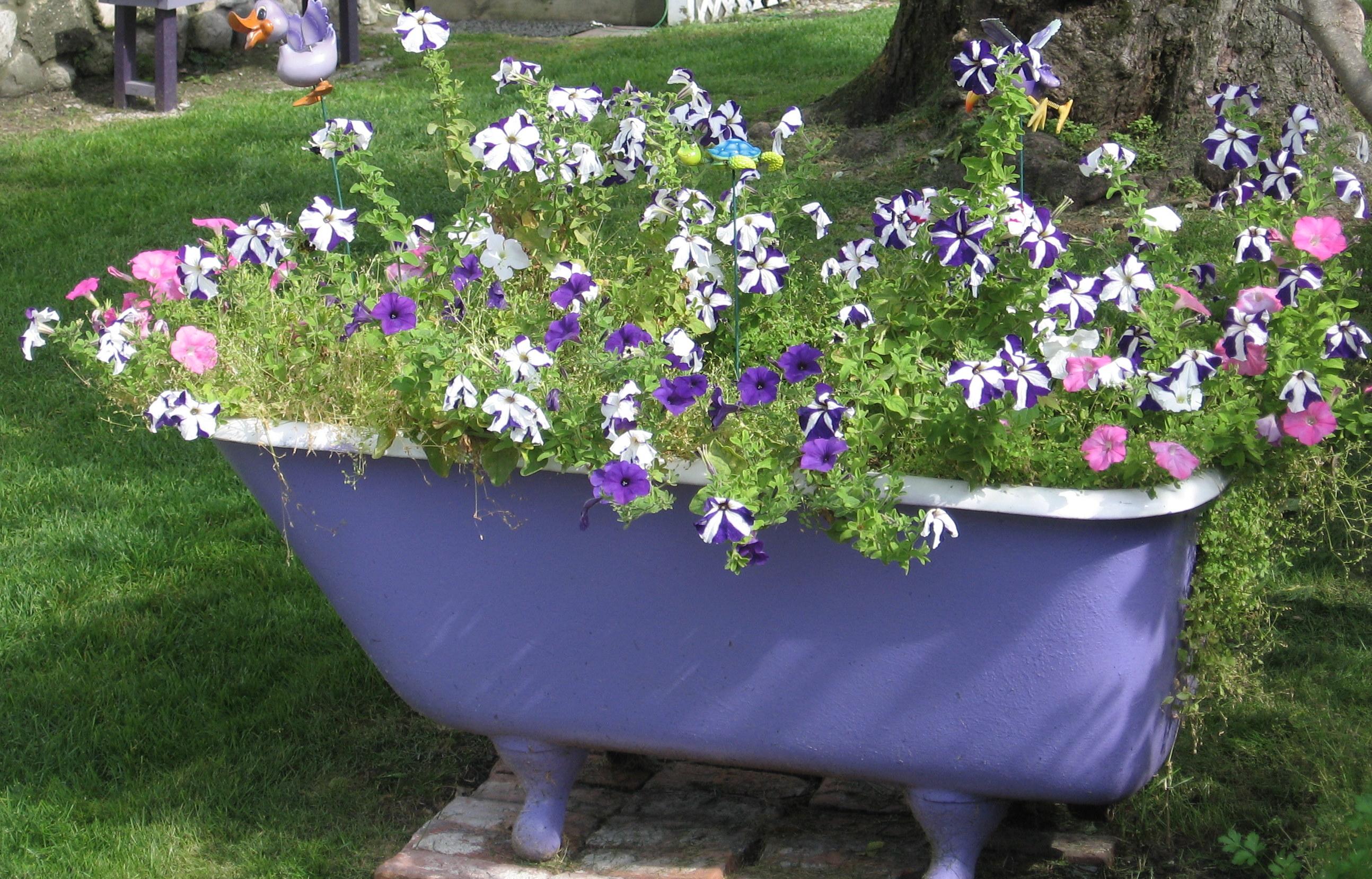 Идея применения бесхозной ванны