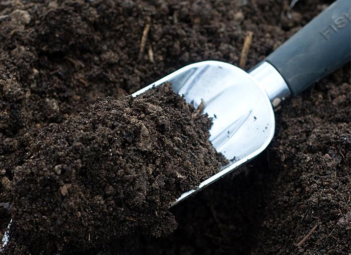 Почва для пикированной рассады должна быть питательной