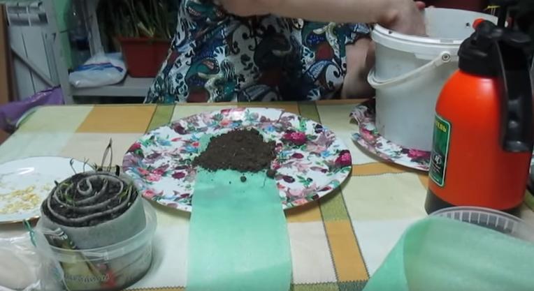 Раскладка грунта на подложке
