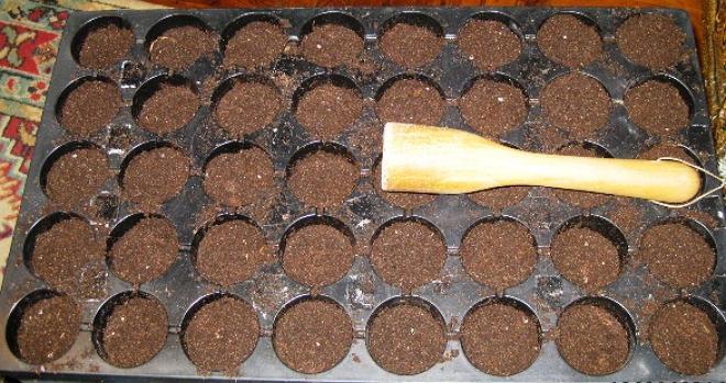 Рассадные кассеты с почвой