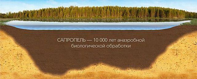 Сапропель образуется в результате отложения органики на дне рек и других водоемов в течение многих столетий