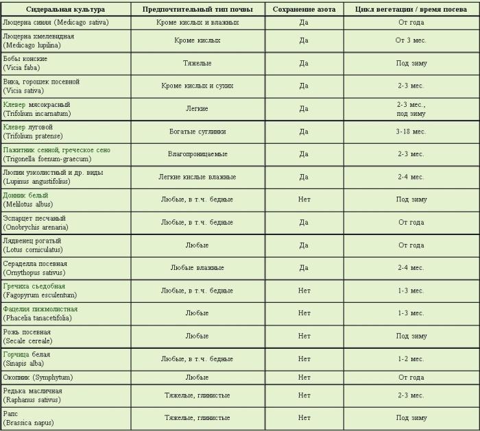 Сидераты и зеленое удобрение