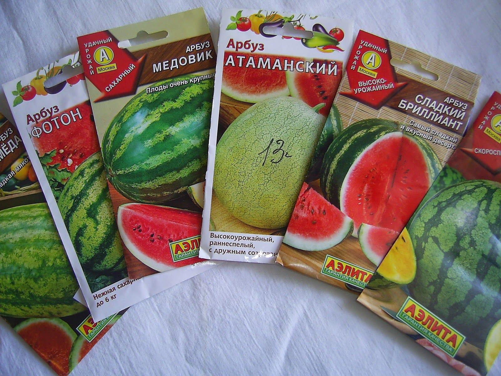 Сорта арбуза