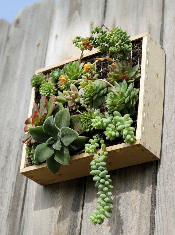 Ящик с растениями можно использовать в качестве клумбы для вертикального озеленения
