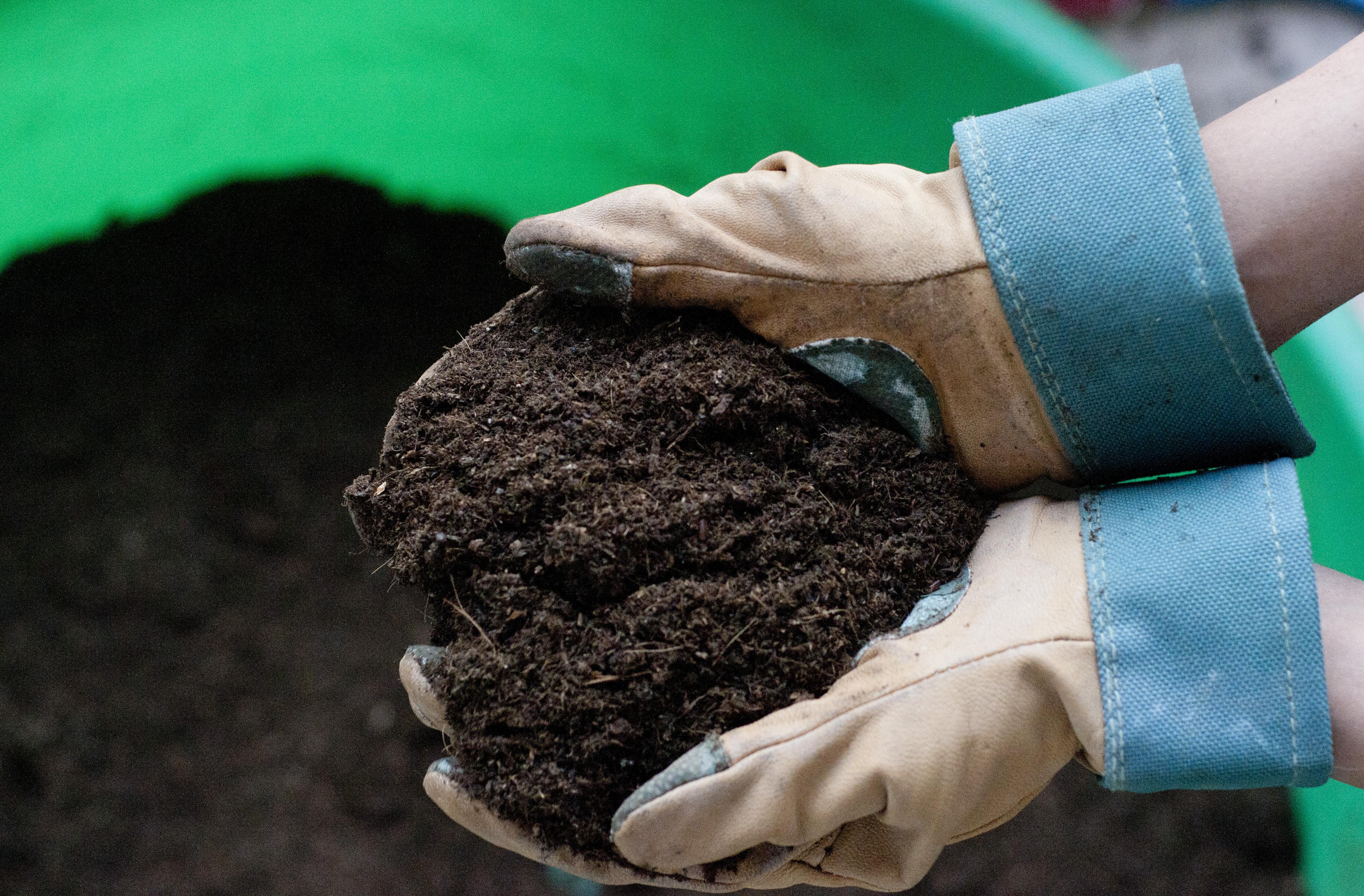 Подготовка почвы для рассады огурцов