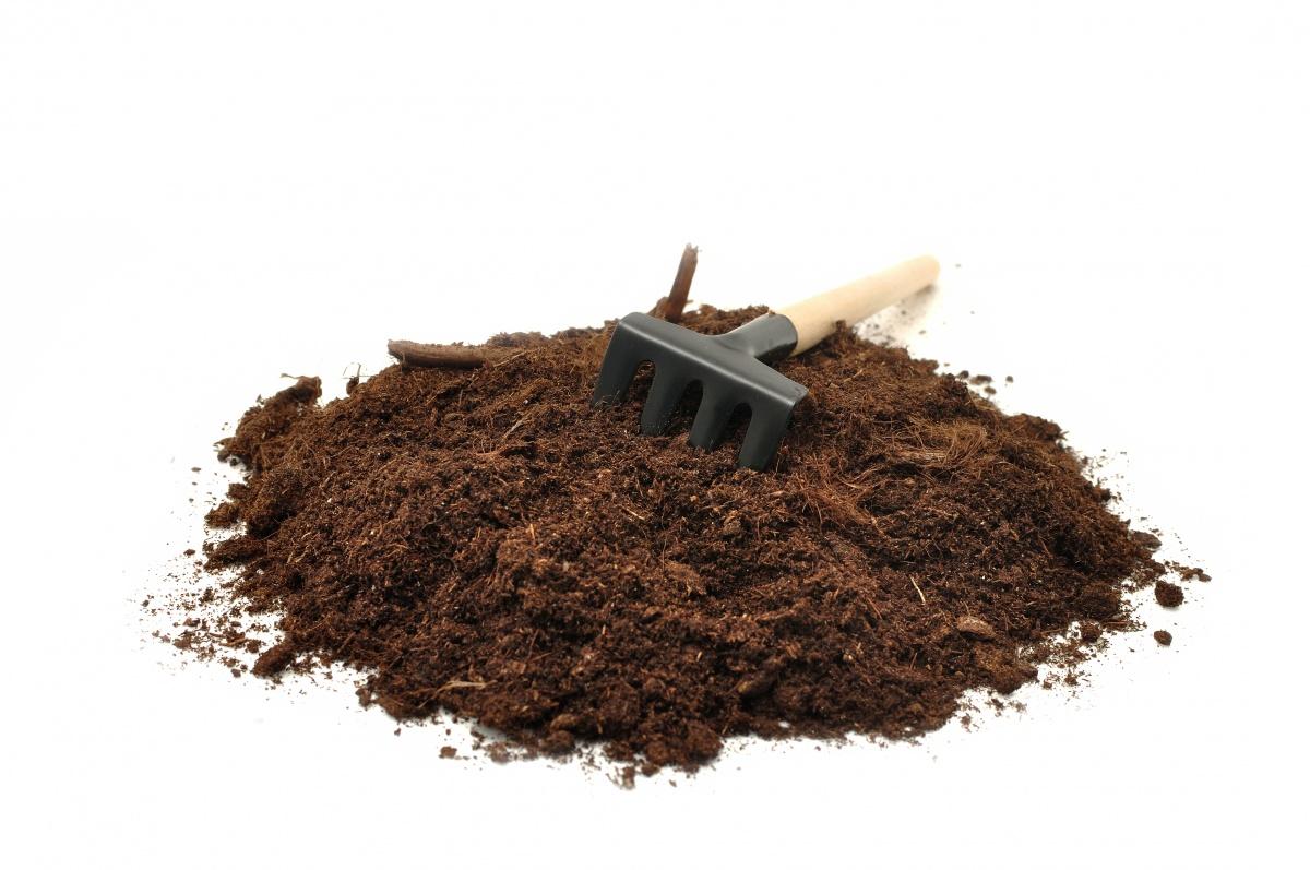 Торф - один из популярных компонентов рассадных почвосмесей