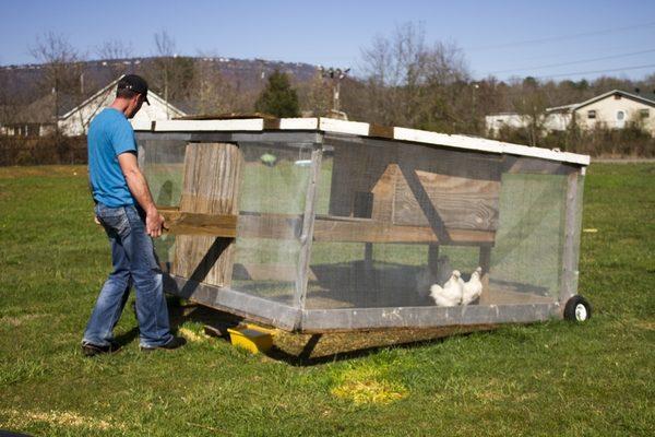 Одним из примеров использования технологий пермакультуры является «куриный трактор» - переносное жилище для птиц, которое провозится по огородам или полю. Куры же, ища насекомых, разрыхляют почву и уничтожают вредителей, попутно питаясь
