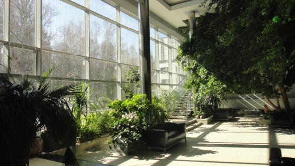 Зимний сад Дома учёных Новосибирского Академгородка